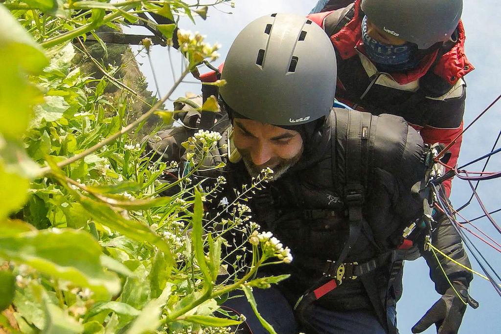 Two men crash landing while paragliding