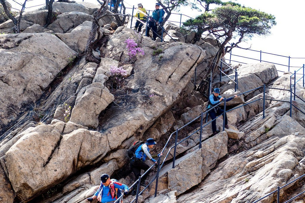 Several hikers gripping a handrail and climbing a rocky incline