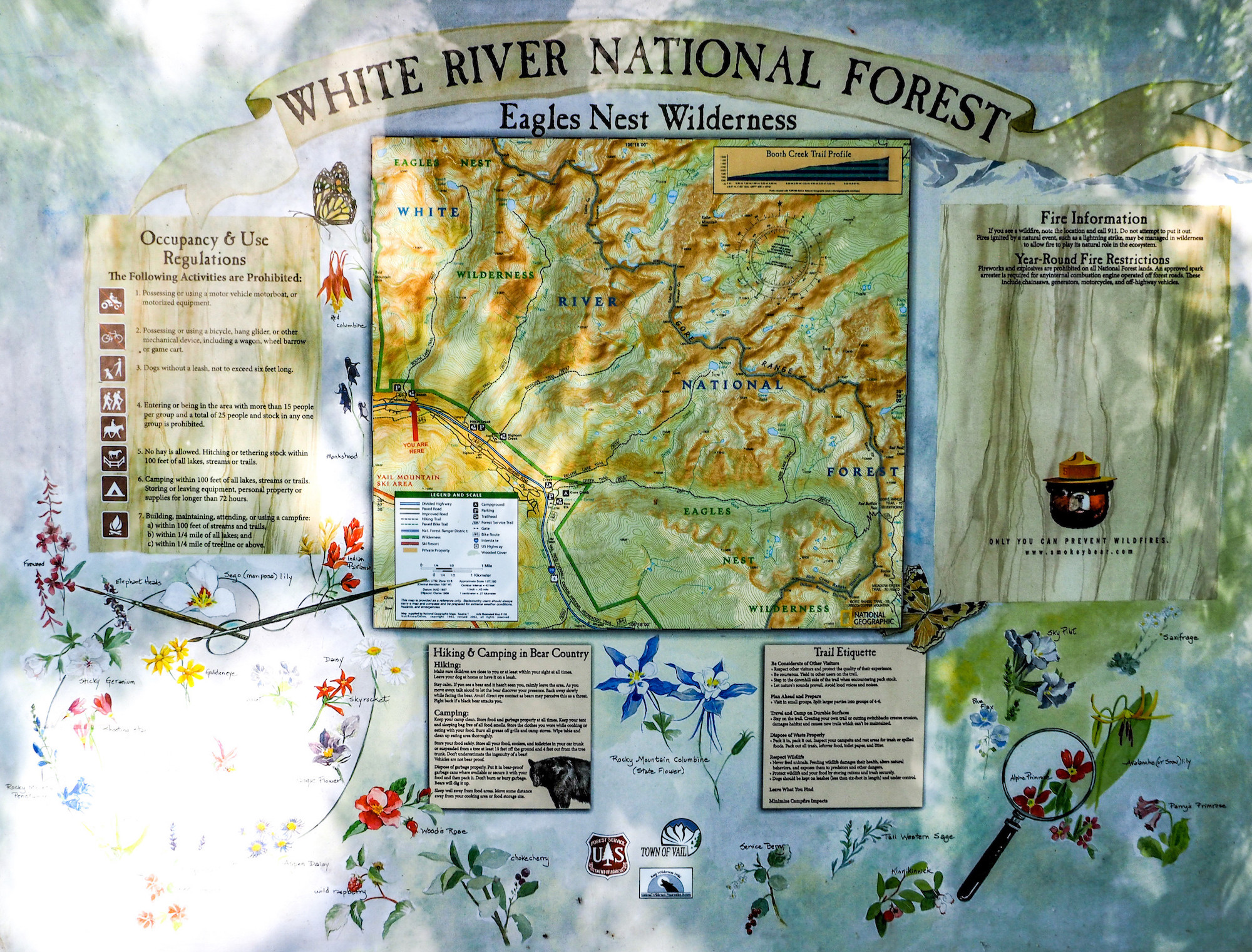 "A trailhead sign reading ""WHITE RIVER NATIONAL FOREST"""